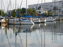Parking near slips - Pasadena Marina St Petersburg Florida